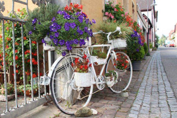 Ein romantisches Schmuckfahrrad in Roschbach.