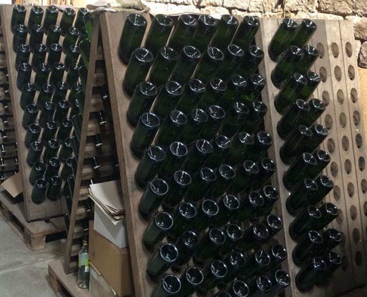 Sektflaschen stecken in einem Rüttelpult.